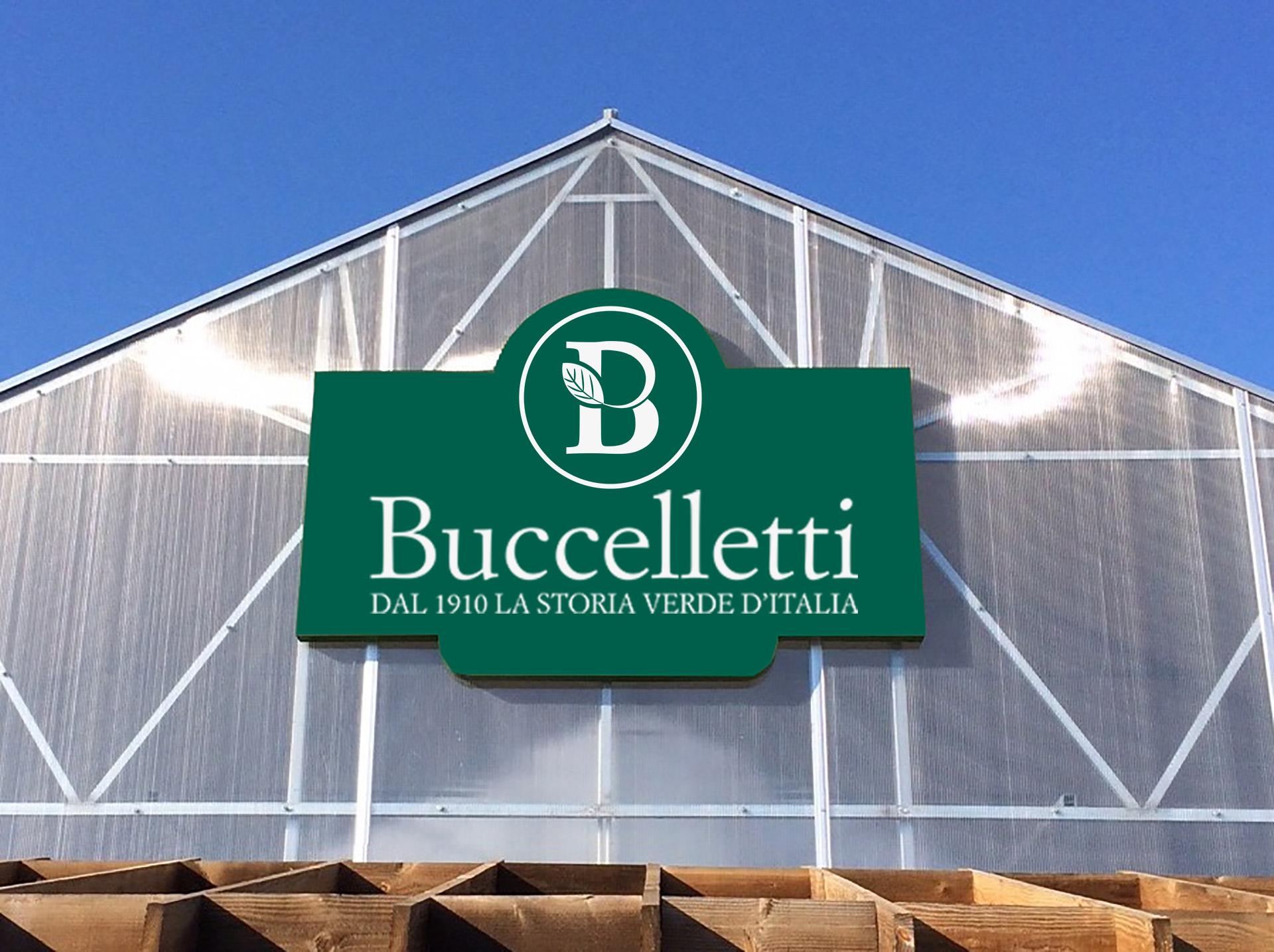 Web Commerce Portfolio | Buccelletti